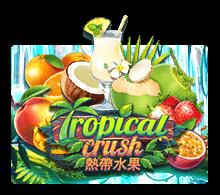 slotxo pc Tropical Crush slotxo 100